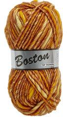 Lammy-Boston